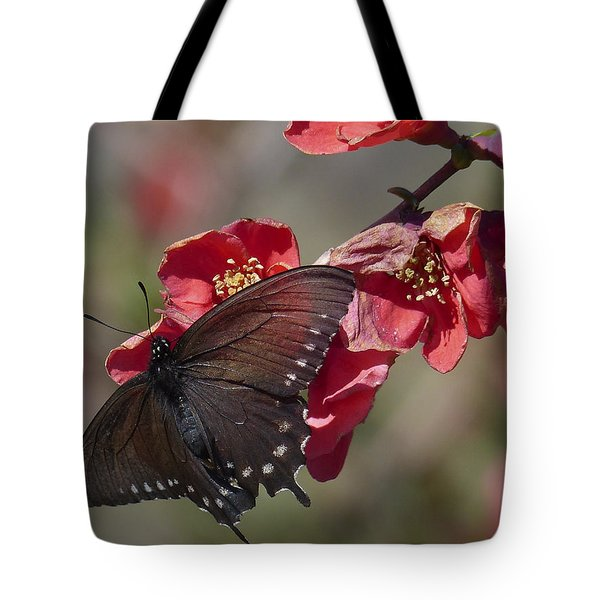 Pipevine Swallowtail And Roses Tote Bag