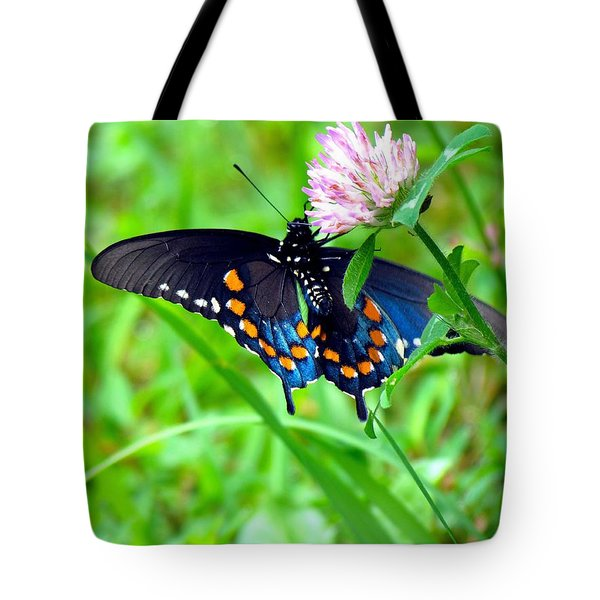 Pipevine Swallowtail Hanging On Tote Bag