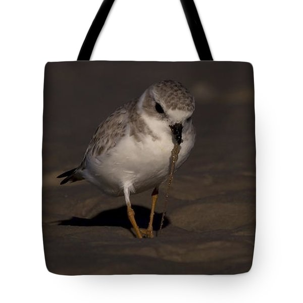 Piping Plover Photo Tote Bag
