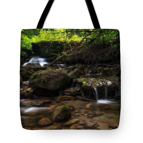 Pixley Falls State Park 2 Tote Bag