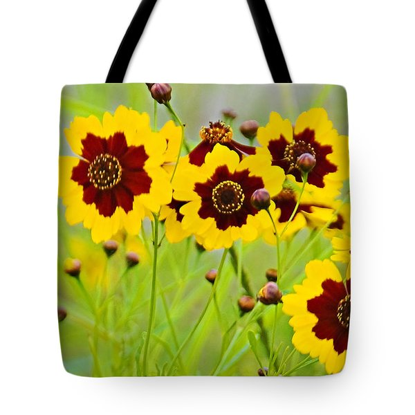 Plains Coreopsis Tote Bag