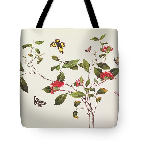 Plant Study With Butterflies Tote Bag