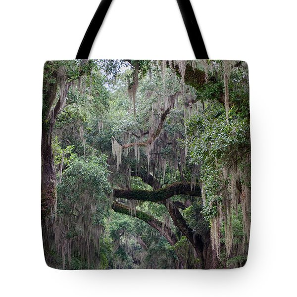 Plantation Path Tote Bag