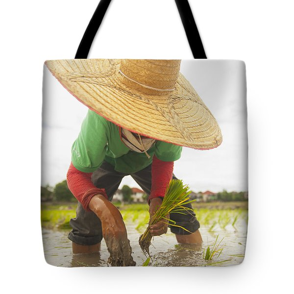 Planting New Ricechiang Mai Thailand Tote Bag by Stuart Corlett