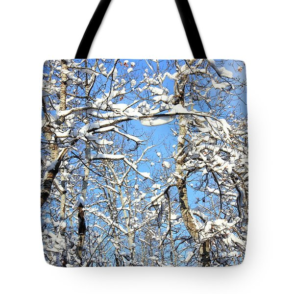 Plastered Tote Bag by Jim Sauchyn