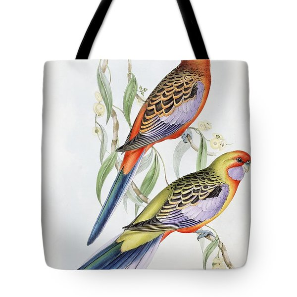 Platycercus Adelaidae From The Birds Of Australia Tote Bag by John Gould