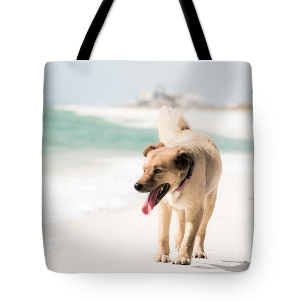 Play Buddy Tote Bag by Shelby  Young