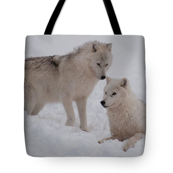 Tote Bag featuring the photograph Play Time by Bianca Nadeau