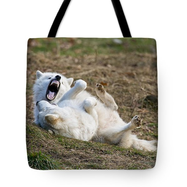 Tote Bag featuring the photograph Playful Arctic Wolves by Wolves Only