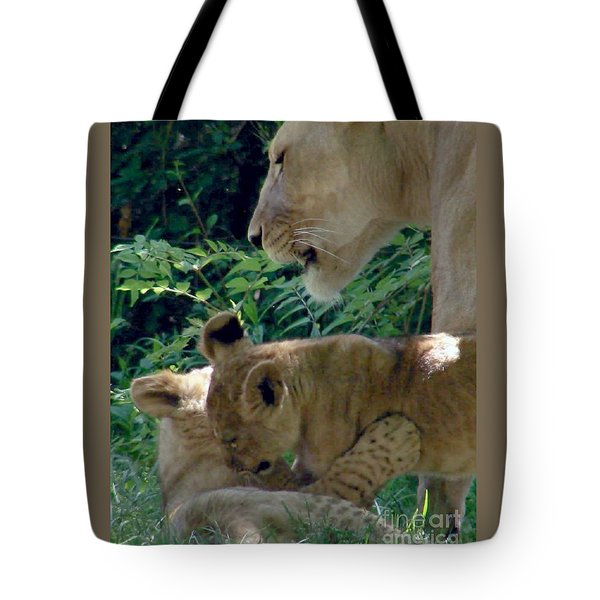 Playful Cubs Tote Bag
