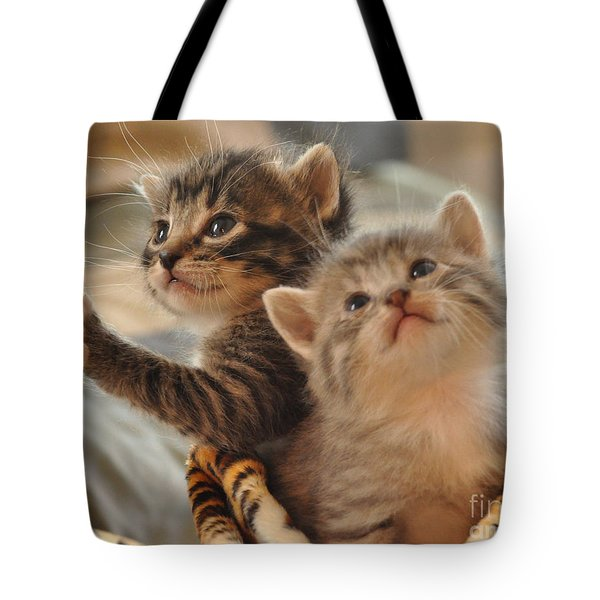 Playful Kittens Tote Bag by Debby Pueschel
