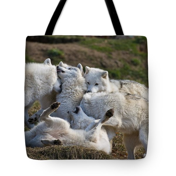 Tote Bag featuring the photograph Playful Pack by Wolves Only