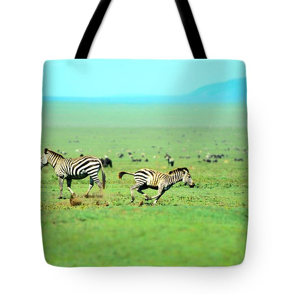 Playfull Zebras Tote Bag