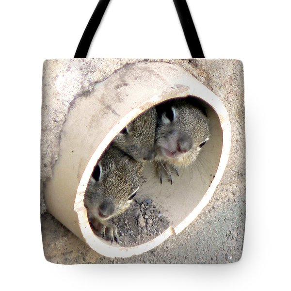 Playing In A Pipe Tote Bag