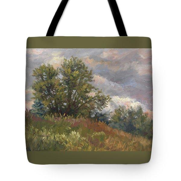 Plein Air - Near The Chicopee River Tote Bag