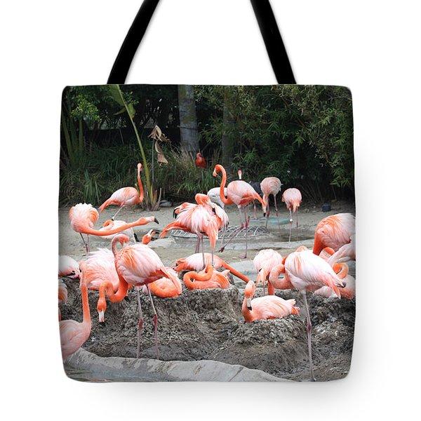 Plenty Of Pink Tote Bag by John Telfer