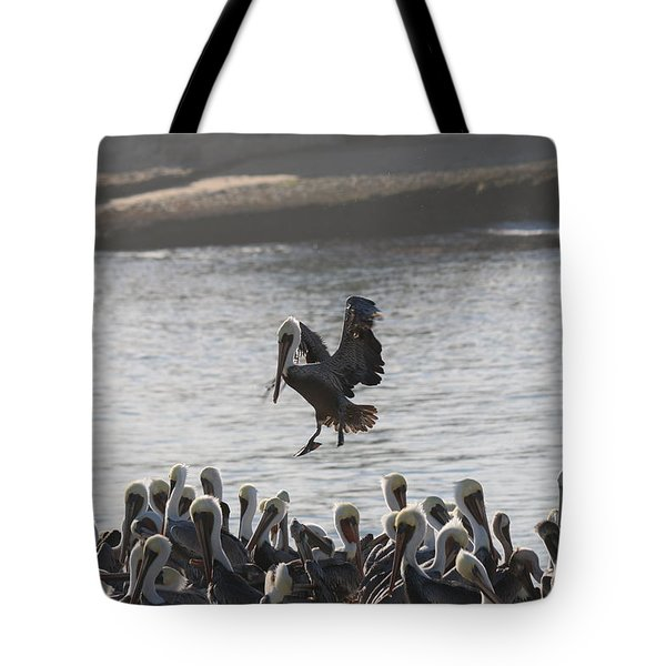 Plenty Of Room Tote Bag
