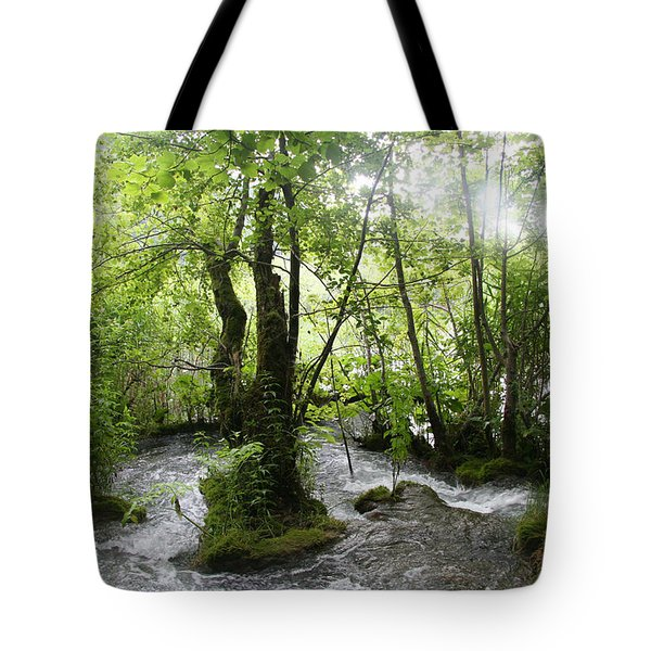 Tote Bag featuring the photograph Plitvice Lakes by Travel Pics