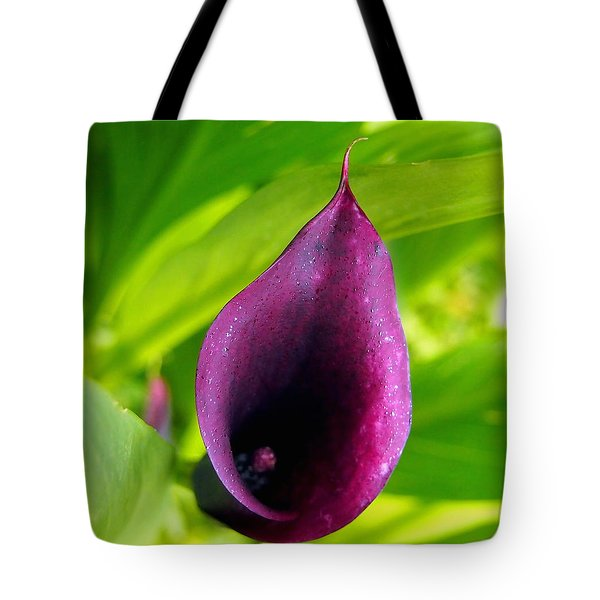 Plum Purple Calla Lilly Flower In The Garden Tote Bag