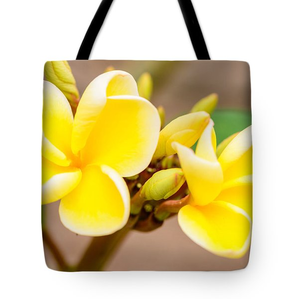 Plumerias Of Paradise 14 Tote Bag