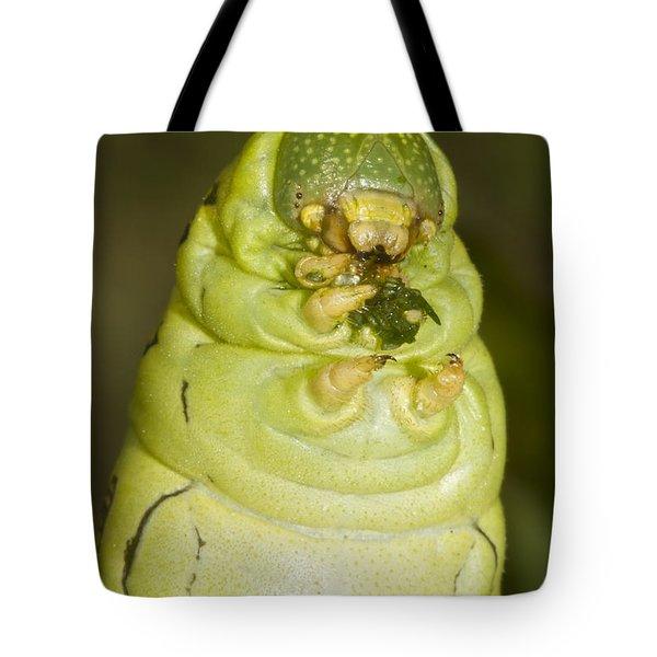 Plump Green Caterpillar Tote Bag