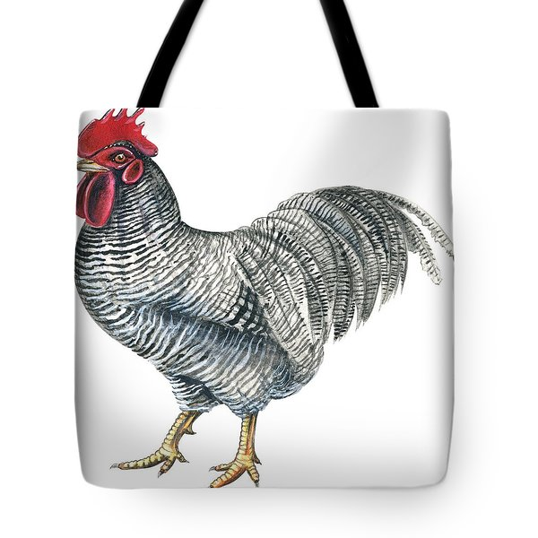 Plymouth Rock Rooster  Tote Bag