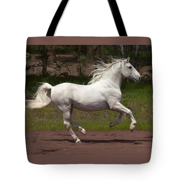 Tote Bag featuring the photograph Poetry In Motion D5809 by Wes and Dotty Weber