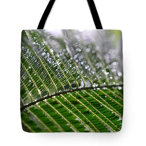Tote Bag featuring the photograph Poinciana Leaves- Glisten by Darla Wood