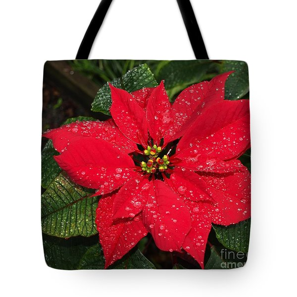 Poinsettia - Frozen In Time Tote Bag