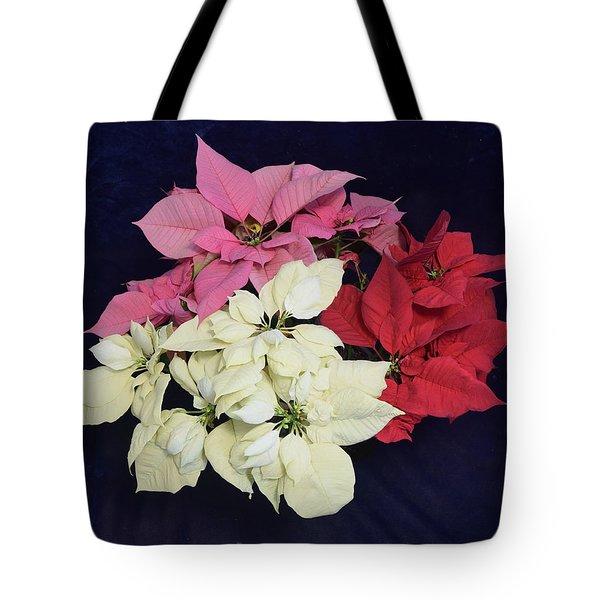 Poinsettia Tricolor Tote Bag