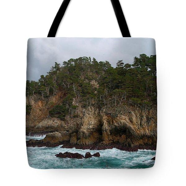 Point Lobos Coastal View Tote Bag