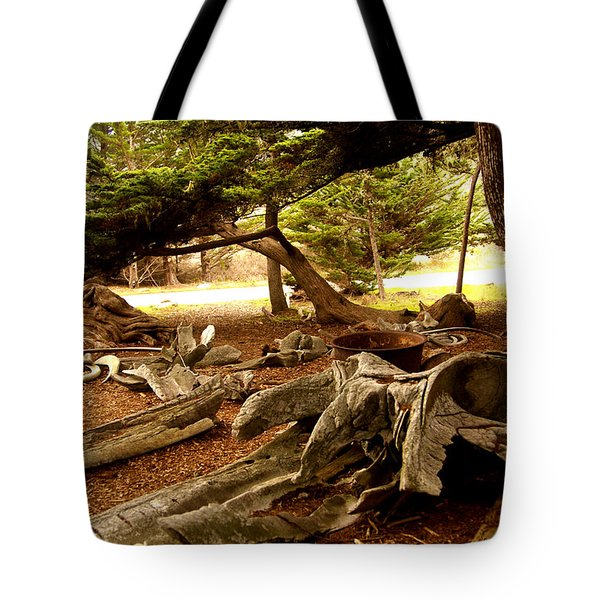 Point Lobos Whalers Cove Whale Bones Tote Bag by Barbara Snyder