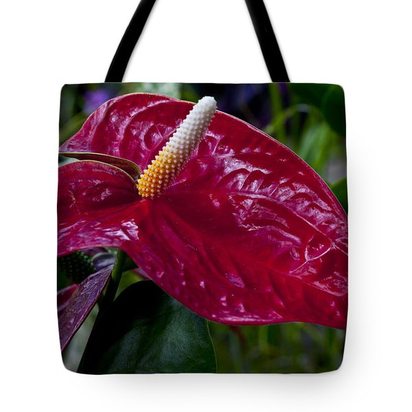 Pointed Tote Bag by Doug Norkum