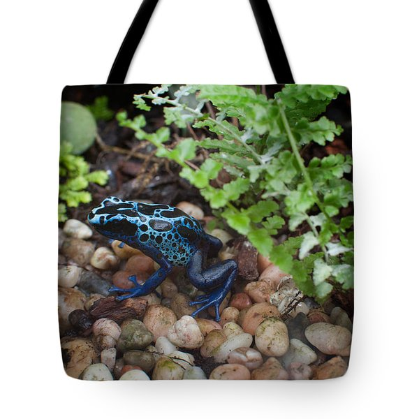 Poison Dart Frog Tote Bag by Carol Ailles