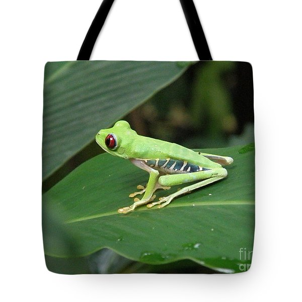 Poison Dart Frog Tote Bag by DejaVu Designs
