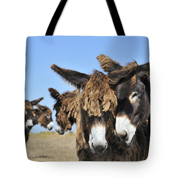 Tote Bag featuring the photograph Poitou Donkey 3 by Arterra Picture Library