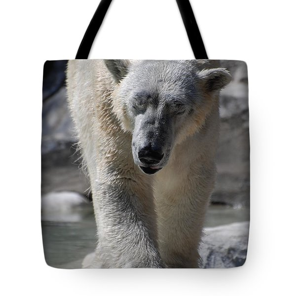 Polar Bear Balance Tote Bag by DejaVu Designs