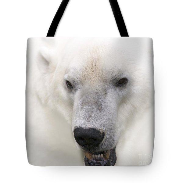 Polar Bear Portrait Tote Bag by Heiko Koehrer-Wagner