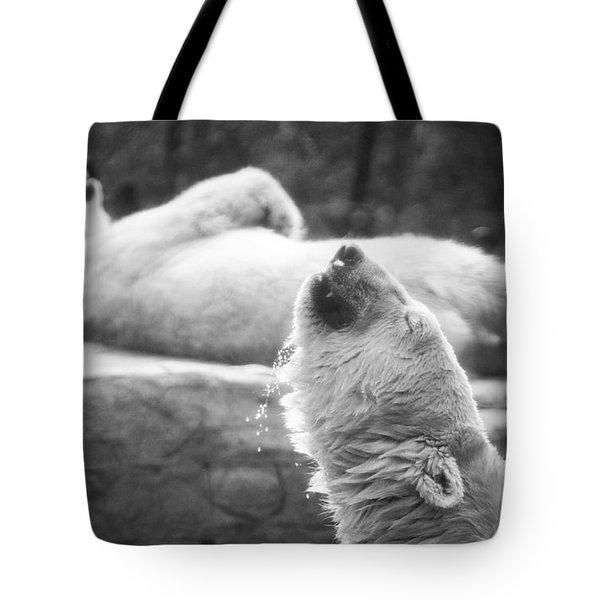 Polar Bears Tote Bag by Michael Ver Sprill
