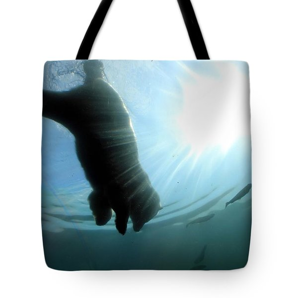 Polar Plunge Tote Bag by Jackie Novak