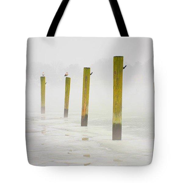Poles Tote Bag by Karol Livote