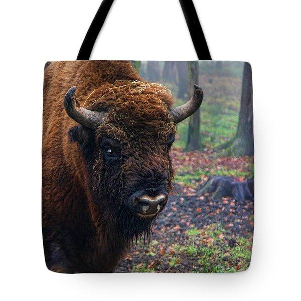 Polish Bison Tote Bag by Mariola Bitner