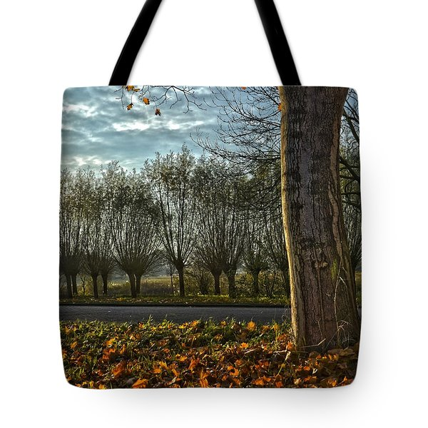 Pollard Willows In Rotterdam Tote Bag by Frans Blok