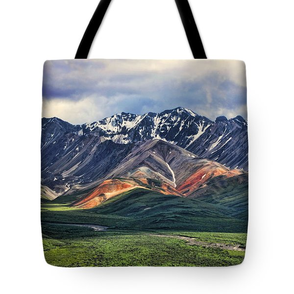 Polychrome Tote Bag by Heather Applegate
