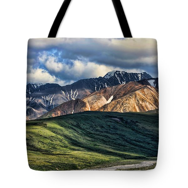 Polychrome Pass Tote Bag by Heather Applegate