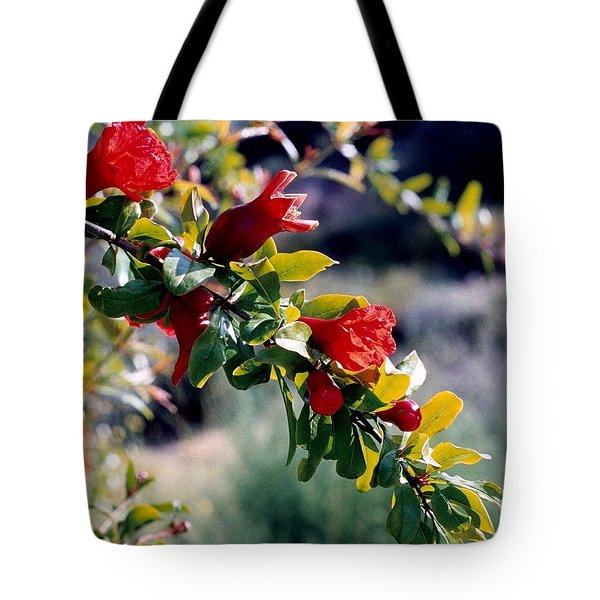 Pomegranate Forming Tote Bag by Kathy Bassett