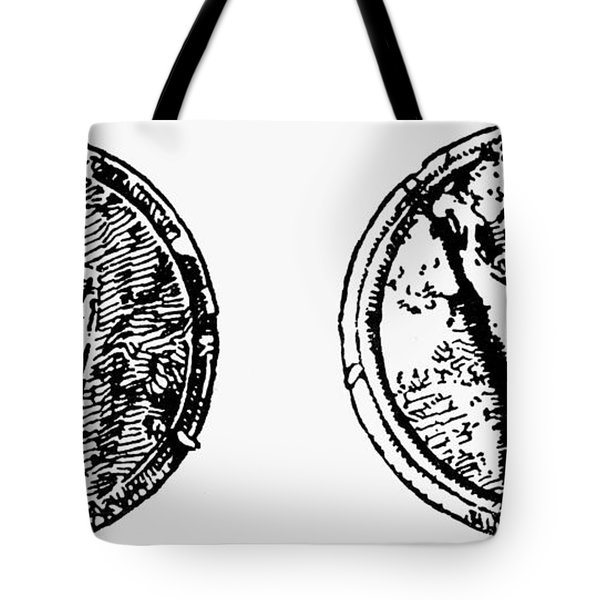 Pompeii Bone Counters Tote Bag