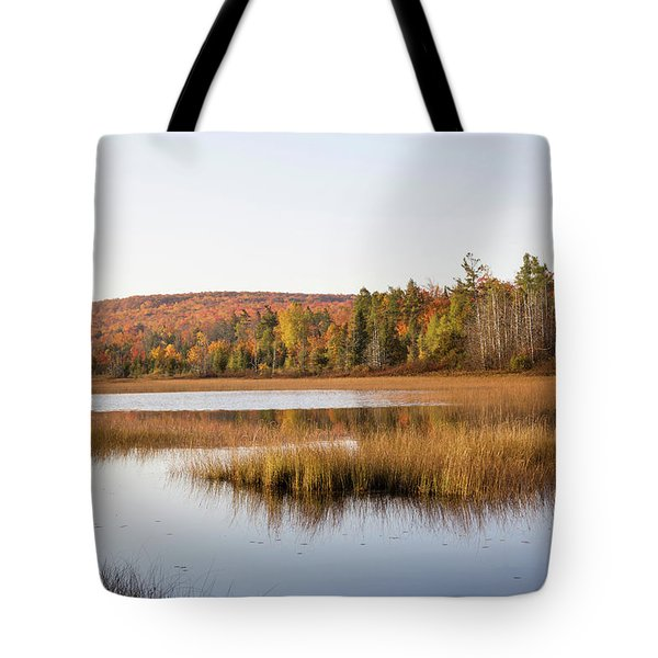 Pond In A Forest, Alger County, Upper Tote Bag