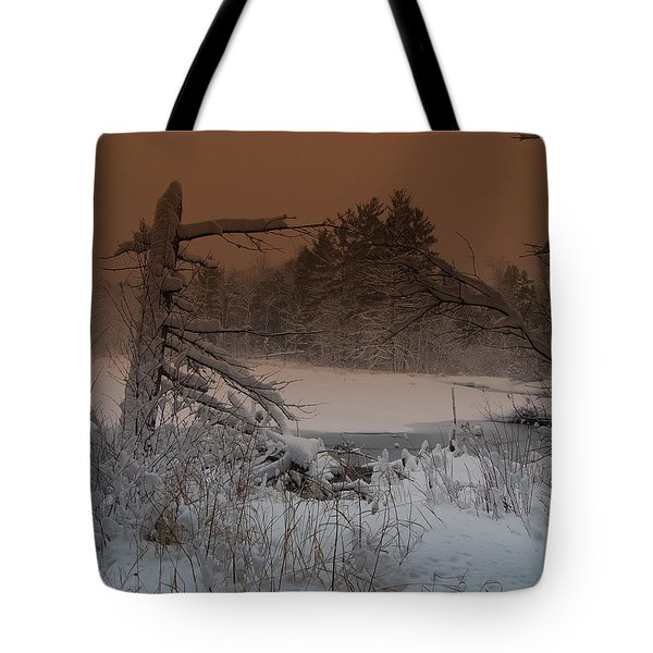 Tote Bag featuring the photograph Pond Scape by Mim White