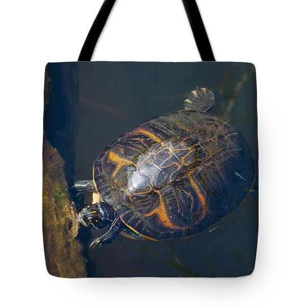 Pond Slider Turtle Tote Bag by Rudy Umans